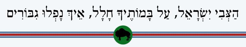 הצבי ישראל על במותיך חלל