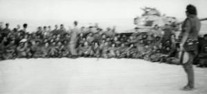 גדוד סיור 87