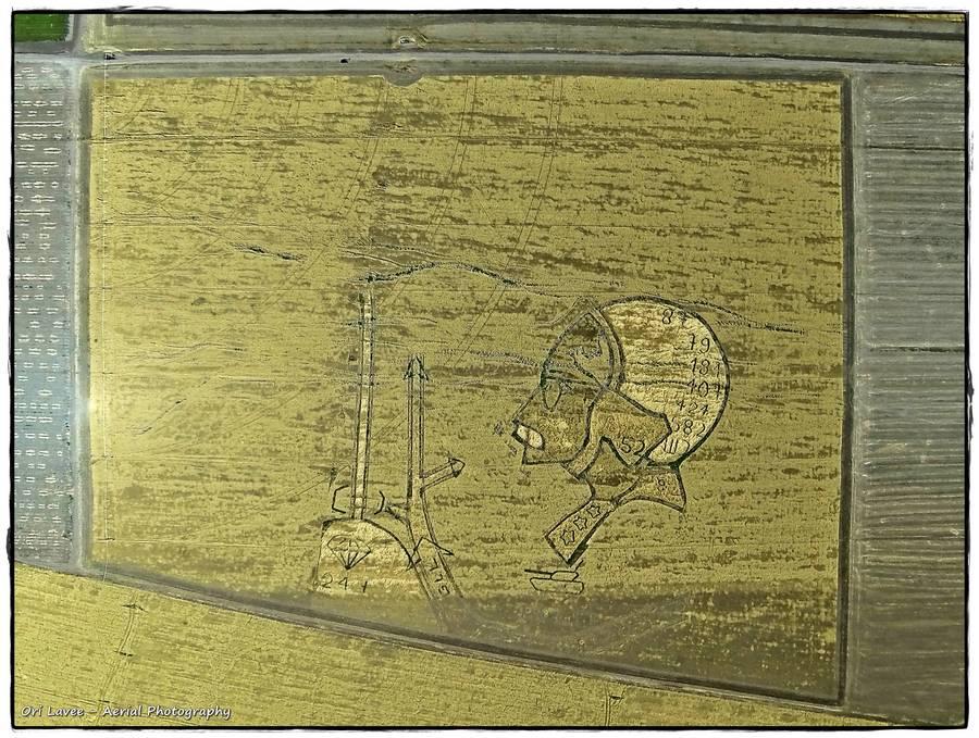 אמנון רשף - ציור שדות